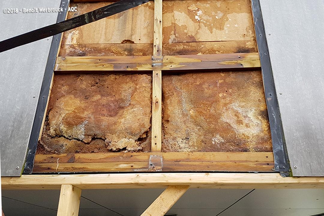 Absence de lame d'air : les infiltrations d'eau ont détérioré la structure bois. [©AQC - Benoît Werbrouck]