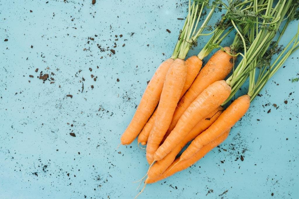 Le groupe de recherche du professeur Mohamed Saafi développe un nouvel additif à base de nanoparticules de carottes pour un béton plus résistant et plus écologique. [©Fond photo créé par freepik - fr.freepik.com]