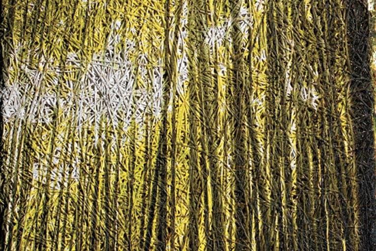 Impression de photographie, impression de motif, découpe de lignes : Organic Creative se plie à l'imagination des architectes. [©Knauf]