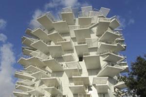 L'Arbre Blanc de Montpellier est une rencontre entre le Japon et la Méditerranée. [©Cemex]