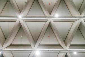 A l'intérieur du centre d'interprétation, les visiteurs découvrent la structure nervurée du plafond. [©David-Morganti]