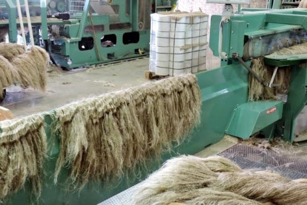Définition fibre et laine de lin