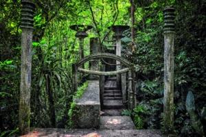 D'énormes colonnes cannelées sont éparpillées dans la végétation qui laisse entrevoir une ville rêvée inachevée, parsemée de sentiers et d'escaliers. [©Rod Waddington]