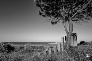 """Éléments du """"Jardin Minéral"""" dans les dunes du Point Zéro créé par Joséphine Chevry en 1968 à La Grande Motte. [©Fabrice Duvert]"""