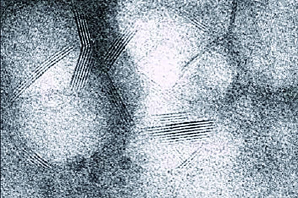 Echelle nanométrique Microscope électronique à transmission. [©A. Baronnet, CINaM, CNRS Marseille, France]
