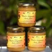 Miel issu de ruches installées sur les sites de production Cemex. [©Cemex]