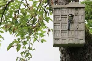 """Guido Zimmermann a élargi sa série de pendules avec quelques maisons à oiseaux """"Sozialmeisenbau"""" (ou Constructions sociales pour mésanges), s'inspirant de HLM italiens..."""