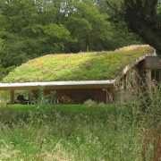 Derbisedum Pack, des bacs pré-cultivés modulaires pour la végétalisation extensive des toitures et des espaces verts. [©Derbigum]