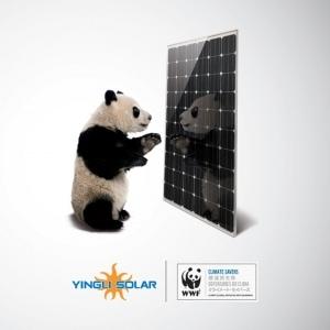 Vignette Yingli Climate Savers WWF carree.indd