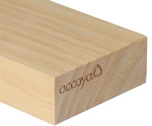 accoya_träbit